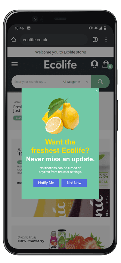 Mobile web push notification - soft opt-in