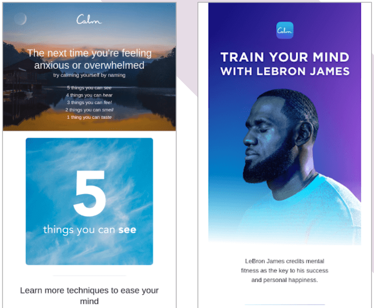 Pitfalls of Segmentation: Similarities vs. Differences of Calm's emails